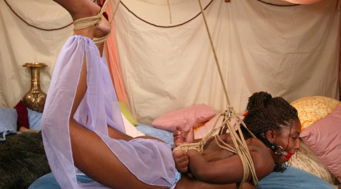 Sia in  Hogtied Sia June 06, 2003  Handler, Rope Bondage
