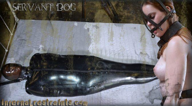 Hazel Hypnotic in  Infernalrestraints Servant Dog May 13, 2011  Metal Bondage, Blow Job