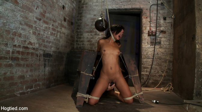 Skin Diamond in  Hogtied Brutal breath play & massive orgasms take this one to the edge of consciousnessA sweaty mess. April 21, 2011  Rope Bondage, Handler
