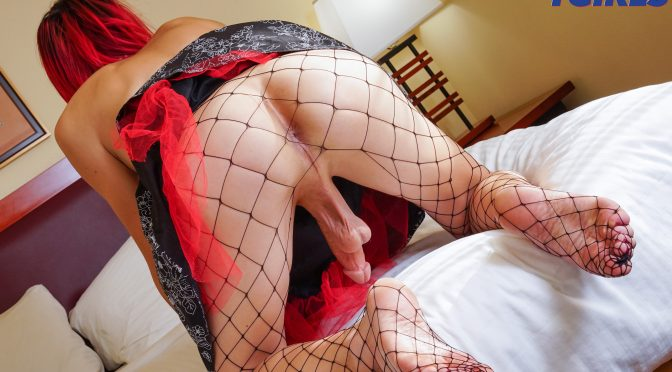 Lizzy Red in  Asianamericantgirls Lizzy Shoots A Big Load! August 22, 2017  Transsexual