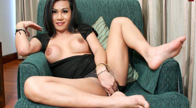 Koi in  Ladyboyladyboy Koi Shoots A Big Load February 05, 2010  Transsexual