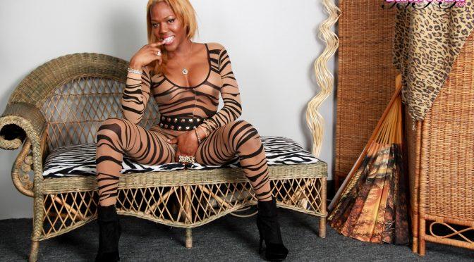 Kristal in  Blacktgirls Kristal Cat Suit April 01, 2014  Transsexual
