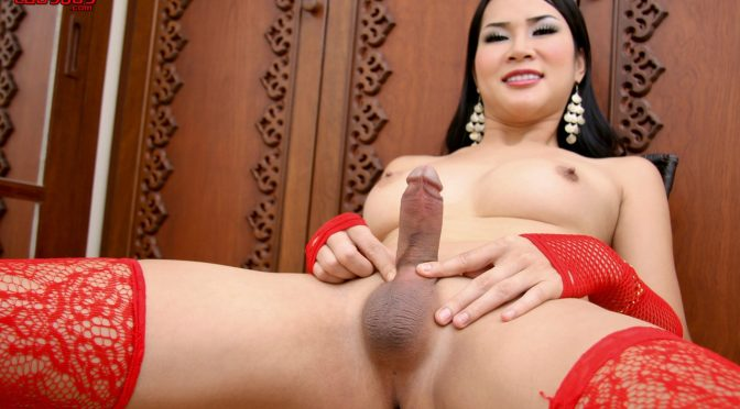 At in  Ladyboyladyboy At Shoots A Load September 10, 2010  Transsexual