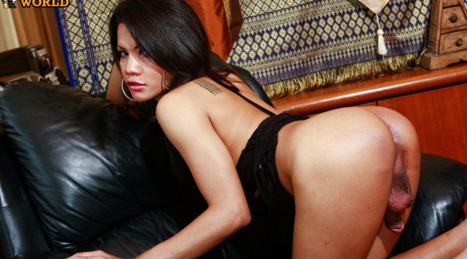 Benz in  Franks-tgirlworld Benz Is Horny Again! November 12, 2009  Transsexual
