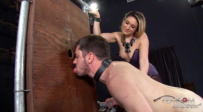Kylie Kalvetti in  Femdomempire Gloryhole Cock Drain November 04, 2016  Cum Eating