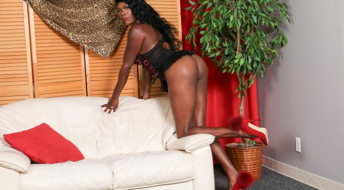Gezelle in  Blacktgirls Gezelle Cums For You! September 22, 2017  Transsexual