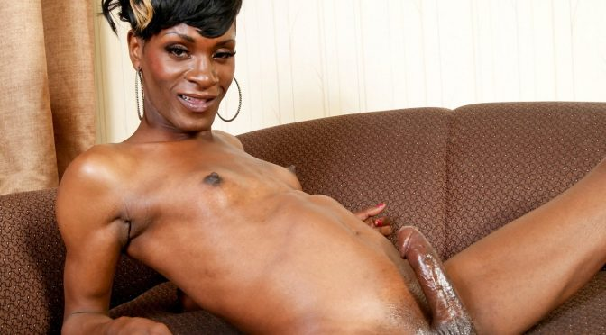 Sunset in  Blacktgirls Short-Haired Cutie Sunset! November 15, 2011  Transsexual