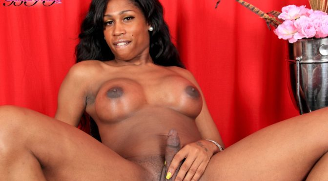 Treasure in  Blacktgirls Treasure Gets Naked For You August 07, 2012  Transsexual