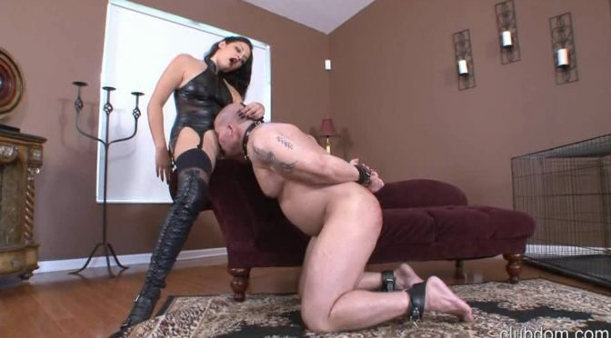 Michelle Lacy in  Clubdom Boot Loving Bitch September 16, 2013  Boot Worship