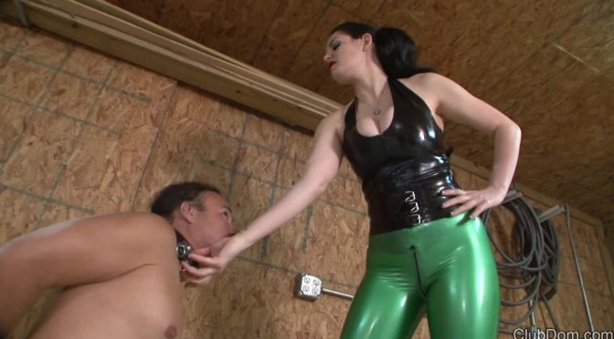 Shae Fatale in  Clubdom Back Hand the Bitch – Never Released February 21, 2018  Female Domination, Femdom