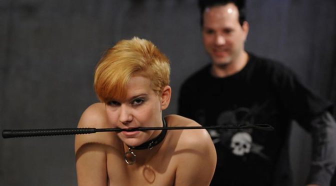 Wasteland.com Two Timing Slut Ava May 21, 2019  Discipline, Flogging