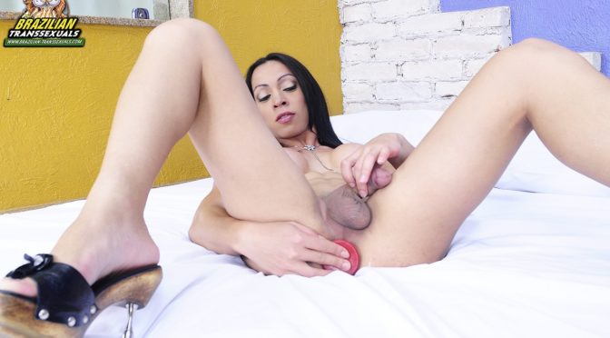 Sabrina Alves in  Brazilian-transsexuals Sabrina Alves Dildo Fun! January 17, 2012  Transsexual