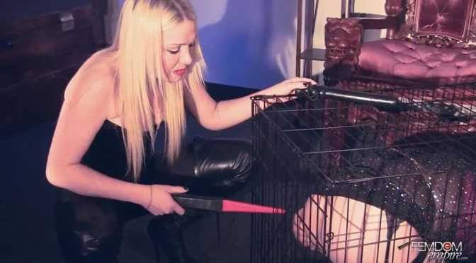 Lexi Sindel in  Femdomempire Caged Punishment February 28, 2012  Blonde, Electro Play