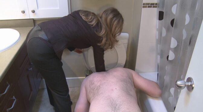 Mistresst Toilet Cleaner November 03, 2009  SLUT TRAINING, SLAVE TRAINING