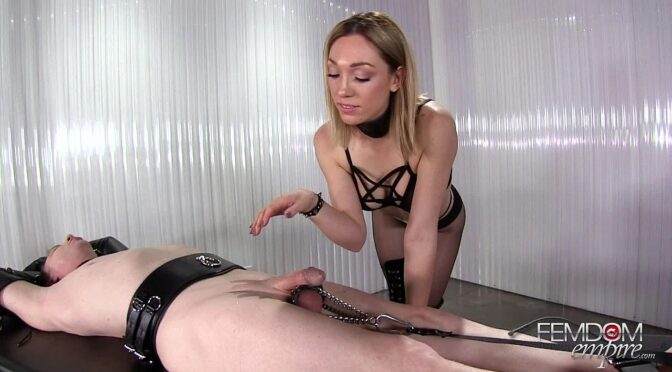 Lily Labeau in  Femdomempire Helpless Hand Humper April 03, 2017  CBT