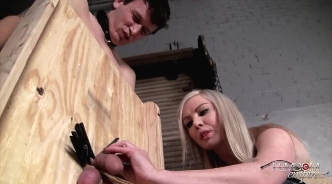 Lexi Sindel in  Femdomempire Cock and Ball Abuse June 30, 2012  CBT
