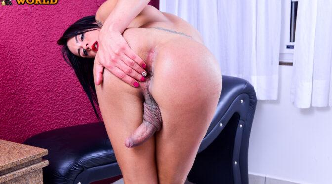 Larissa Castro in  Franks-tgirlworld Super Sexy Larissa Castro! September 07, 2017  Transsexual