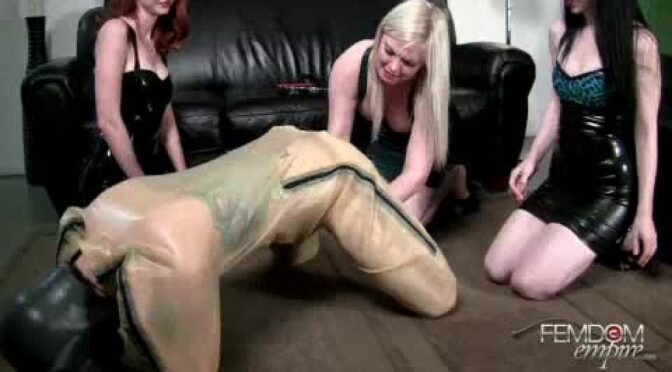 Kendra James in  Femdomempire Horny pup May 13, 2012  Humiliation