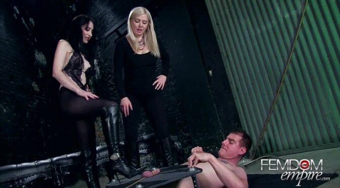 Lexi Sindel in  Femdomempire Mega Bitches October 27, 2012  Ballbusting