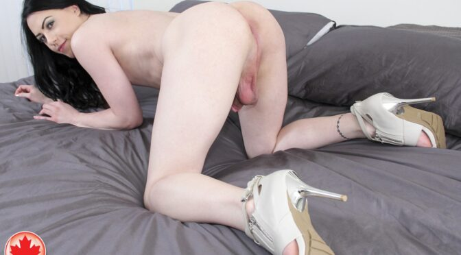 Blair Ryder in  Canadatgirl Blair Ryder Plugs It September 29, 2014  Transsexual