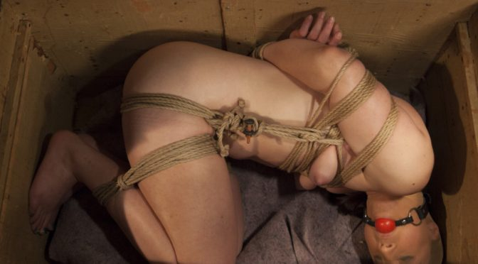 Sophia Locke in  Hogtied The Collectors August 28, 2014  Athletic, Handler