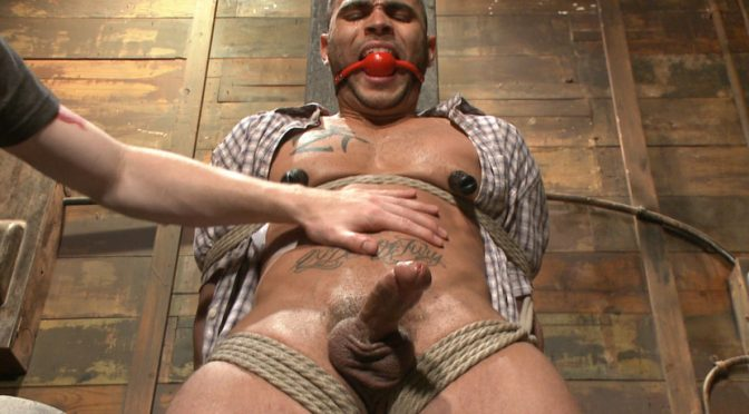 Brock Avery in  Menonedge Obnoxious contruction worker gets what he deserved June 10, 2014  Vibrator, Male Handler