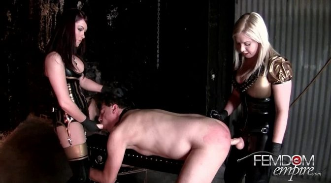 Deanna Storm in  Femdomempire Well fucked hole December 06, 2012  Humiliation, Blonde