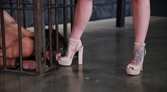 Ivy Lebelle in  Femdomempire Caged to Serve February 23, 2018  Brunette, Foot Worship